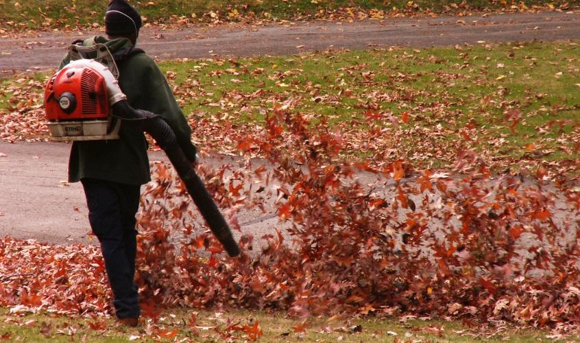 Leaf Blowing Los cinco mejores sopladores de hojas eléctricos del mercado actual