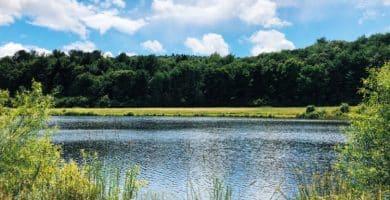 shutterstock 1564849144 e1601330395999 Los 20 lugares más asequibles para vivir en Connecticut