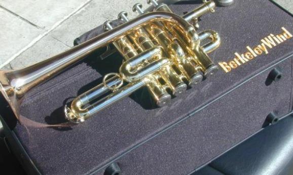 BerkeleyWind Pro BbAG Trompeta Piccolo de latón dorado Las 5 mejores trompetas Piccolo en el mercado hoy