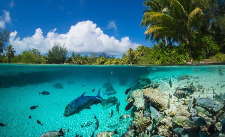 Aguas de Bora Bora