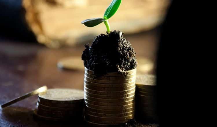 Dividend Por qué una empresa ofrece un dividendo especial y qué es