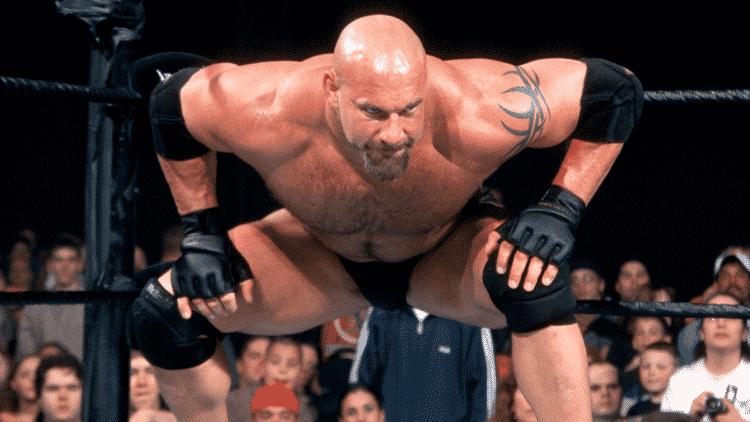 Goldberg Los 20 luchadores profesionales más ricos del mundo (actualizado en 2020)