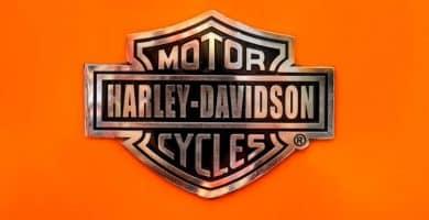 Harley scaled e1596965350523 Dónde encontrar las mejores calcomanías de Harley-Davidson en línea