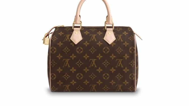 Bolso Louis Vuitton Speedy 25