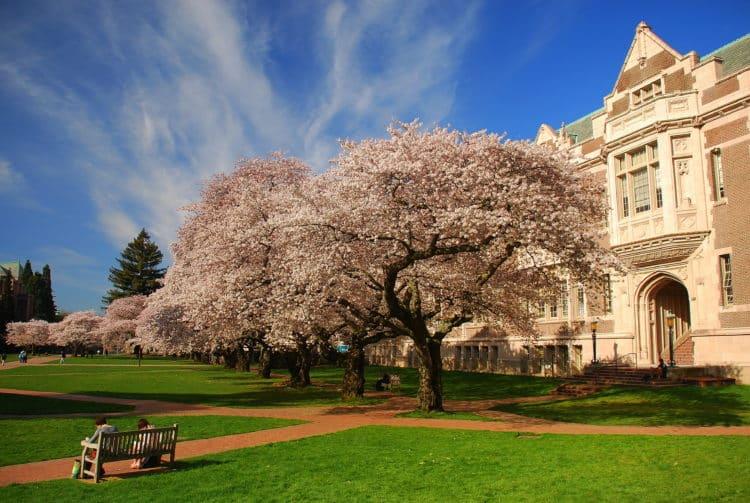 Facultad de Medicina de la Universidad de Washington, St. Louis, Missouri