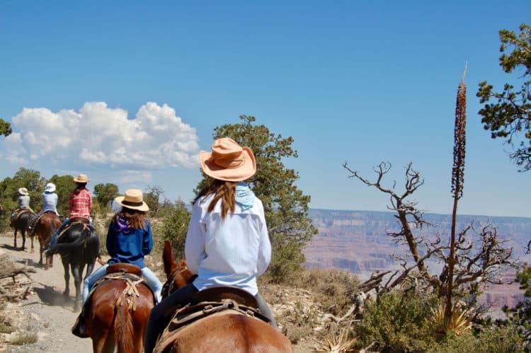 Gran Cañón en mula