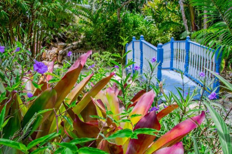 Jardines Botanicos
