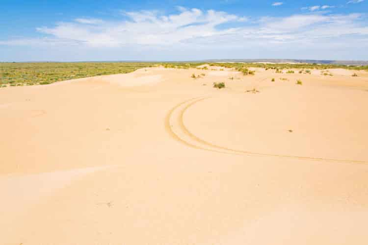 Mescalero Sands North Dune Área OHV