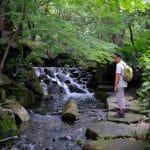 shutterstock 1574209834 e1603561814588 La guía del viajero para hacer senderismo en Nagoya, Japón