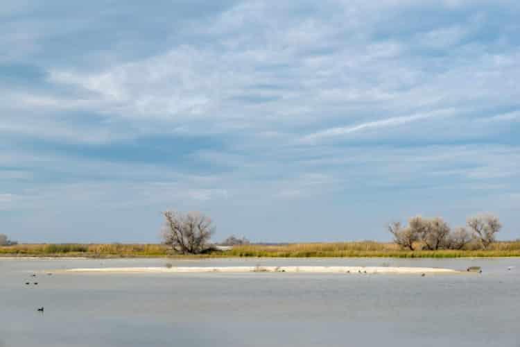 Refugio Nacional de Vida Silvestre Kern
