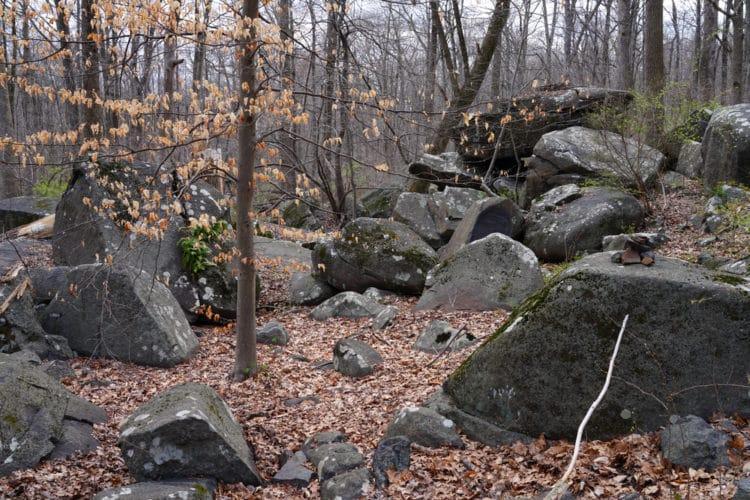 shutterstock 1701152728 e1600881412924 Una guía del viajero sobre senderismo en Princeton, Nueva Jersey