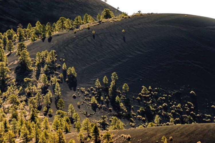 Tour Monumento Nacional Sunset Crater Volcano