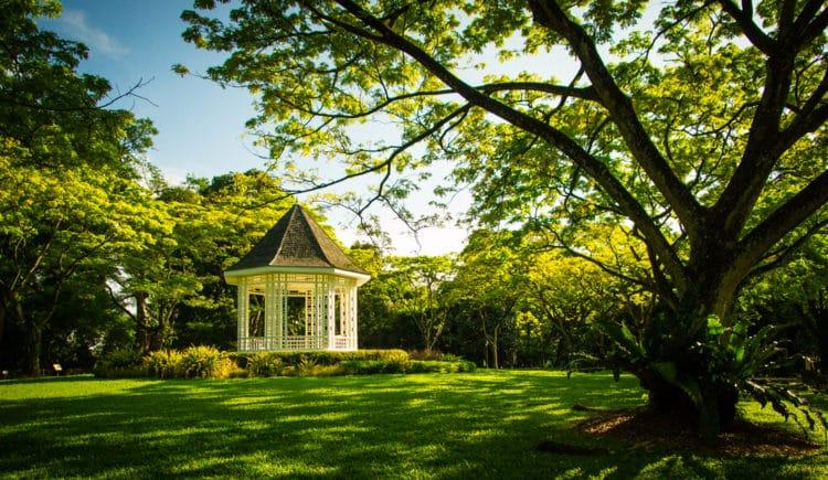 Paseo por los jardines botánicos móviles