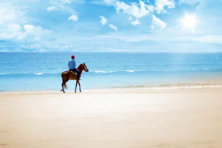 paseo a caballo en el océano