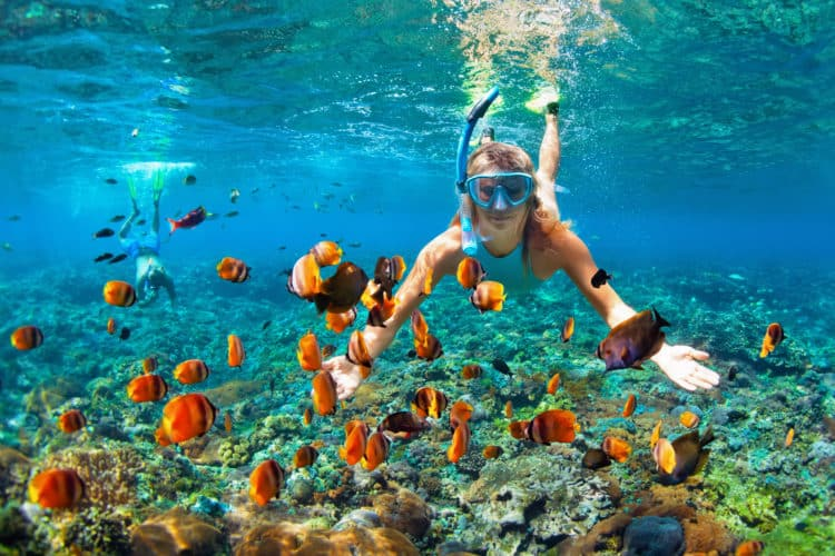 Diving or snorkeling