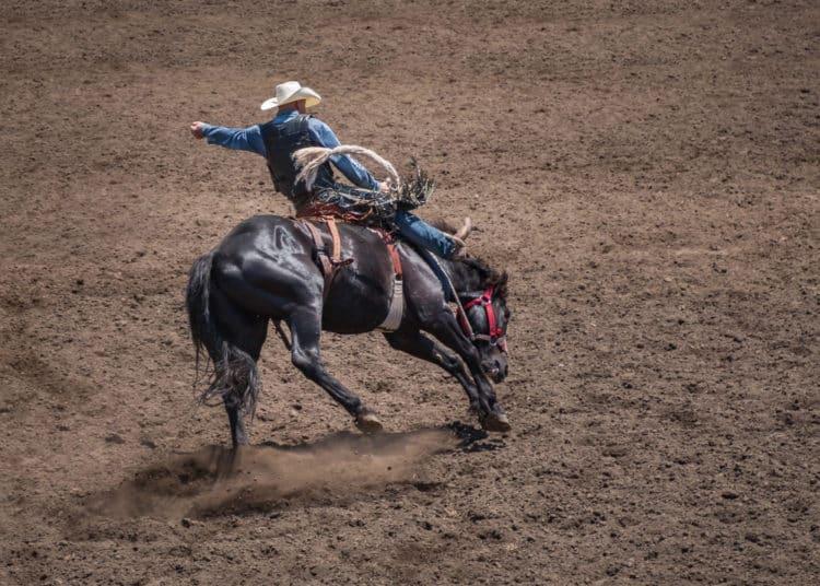 Rodeo de Jackson Hole