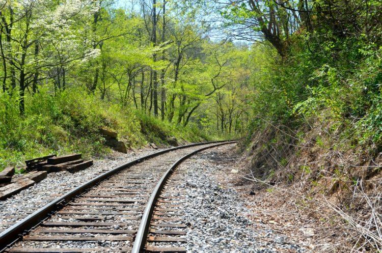 Ferrocarril escénico Blue Ridge