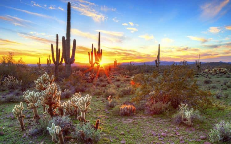 yes e1548887085759 Los 10 lugares más bellos de Arizona