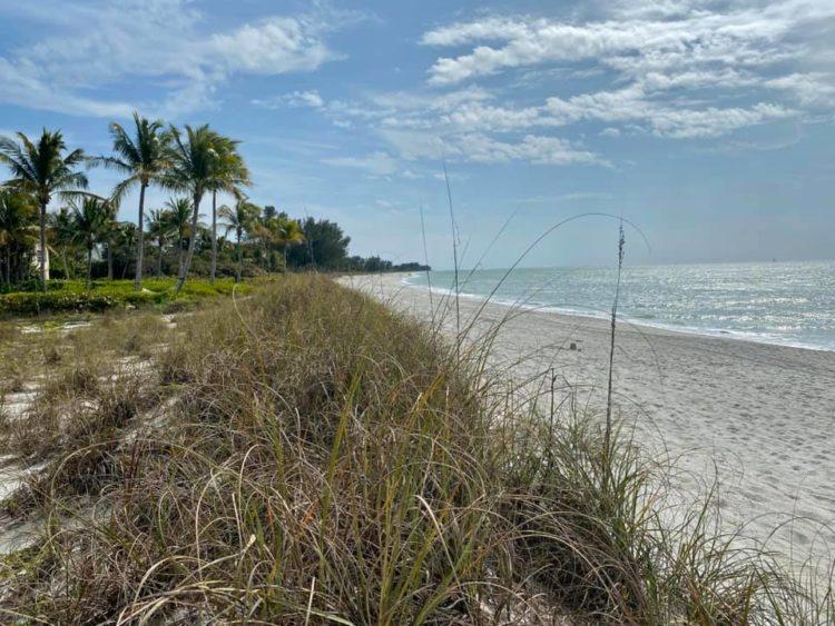 85012621 10163060050725471 7503366105868533760 n 10 razones por las que el South Seas Island Resort de Captiva Island es la escapada familiar perfecta en Florida