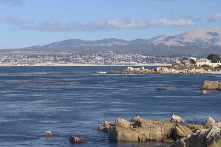 Monterey scaled e1579432608799 Los 10 mejores restaurantes de mariscos en Monterey, CA
