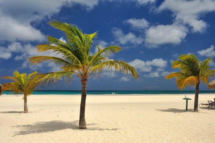 Playa Manchebo