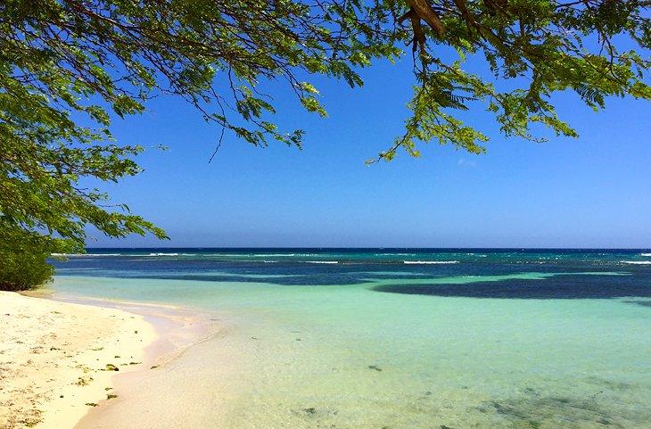 Playa de Savaneta