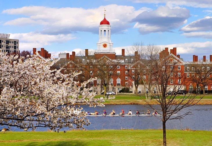 Harvard en la primavera