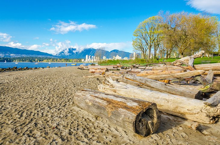 canada british columbia vancouver best beaches kitsilano beach 12 mejores playas en Vancouver, BC