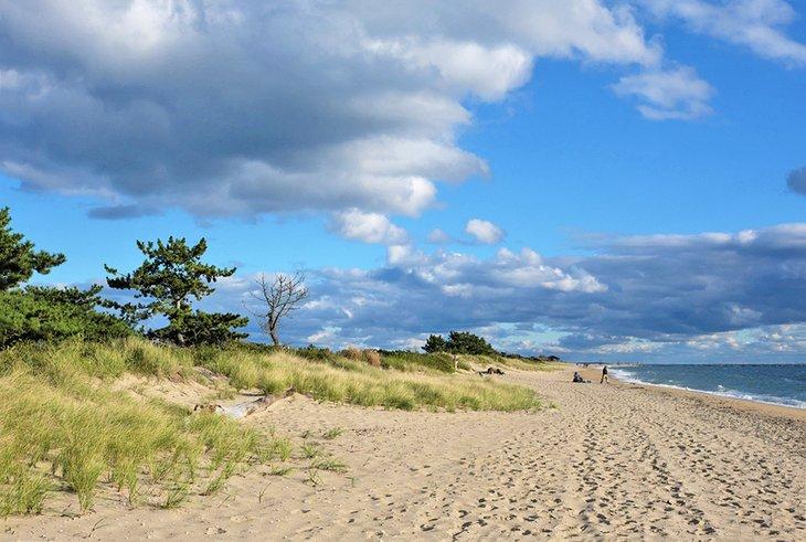 Parque estatal Hammonasset Beach