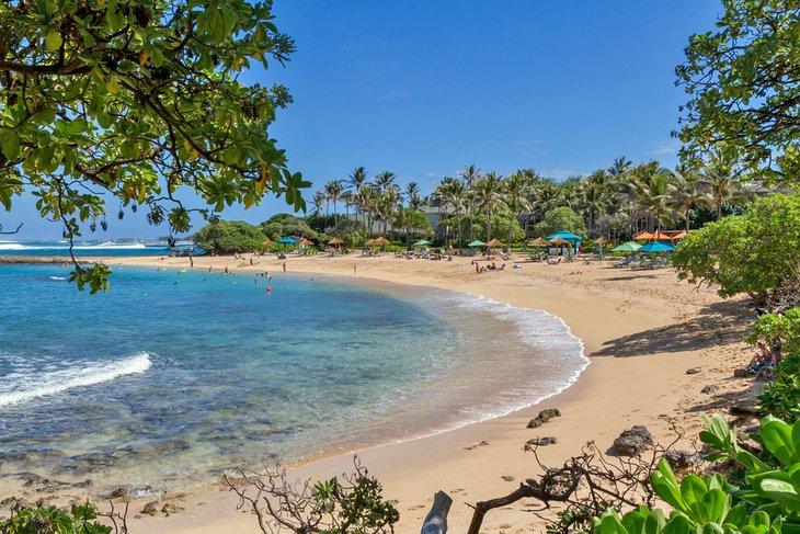 Playa de Turtle Bay