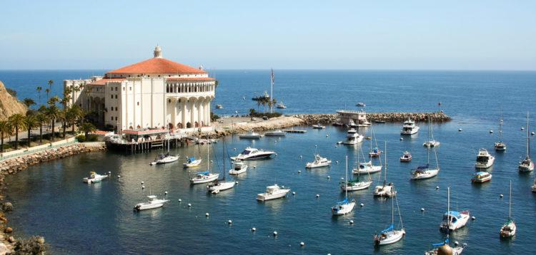 shutterstock 170782829 scaled e1586431992201 Las 20 mejores cosas que hacer en la isla Catalina para principiantes
