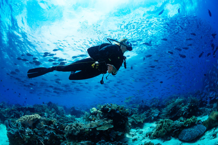 Hacer buceo