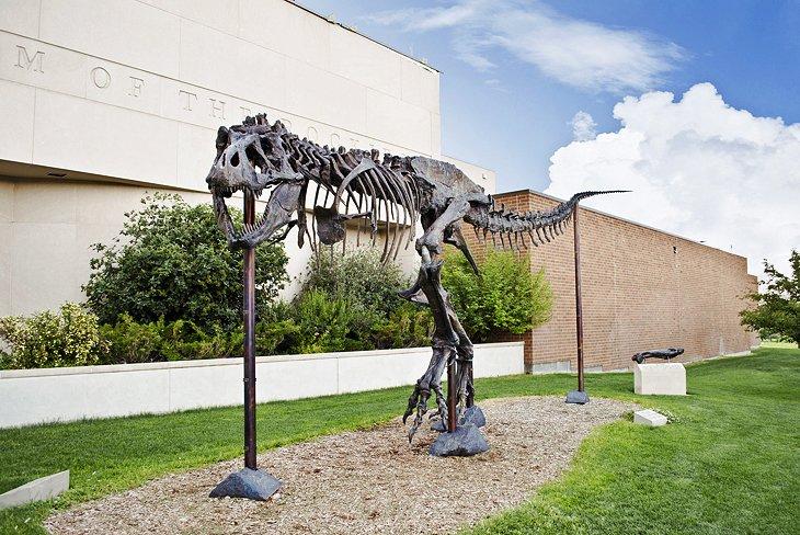 us montana museum of the rockies 16 atracciones turísticas y cosas para hacer mejor valoradas en Montana
