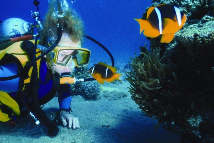 3. Diving in Turks and Caicos 5 razones para amar los Ocean Club Resorts, Islas Turcas y Caicos