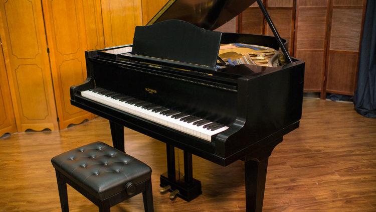 Piano de cola Bluthner Parlor