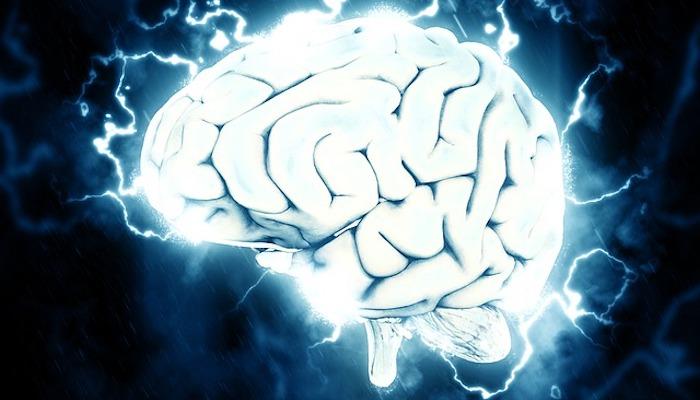 Brain Cómo la ciencia de la neuroplasticidad puede ayudar a sus empleados a prosperar