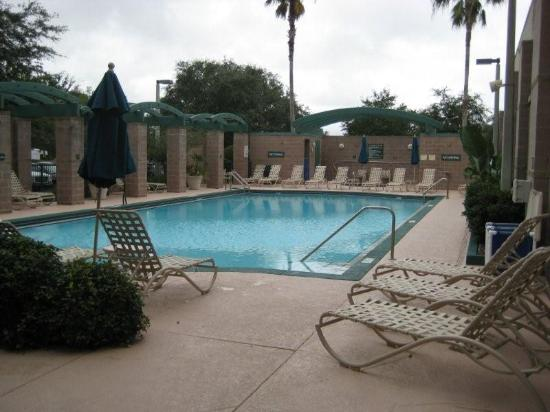 Embassy Suites by Hilton Tampa USF cerca de Busch Gardens