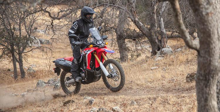 Honda CRF250l Rally Las 10 mejores motocicletas para principiantes