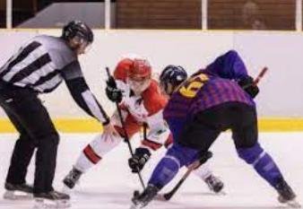 Liga Nacional de Hockey .10 deportes que generan más dinero en todo el mundo 2021