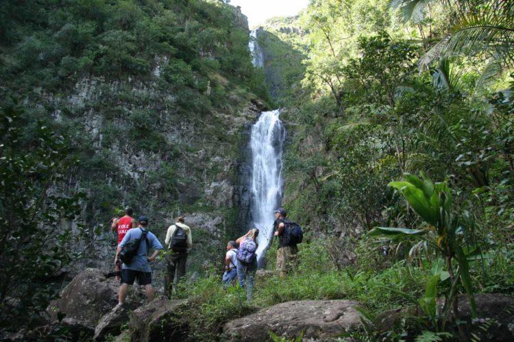 Moaula Falls 023 01192007 Las cinco mejores cascadas para visitar en Hawái