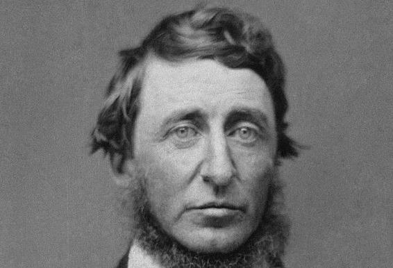 Thoreau Lecciones empresariales de Henry David Thoreau