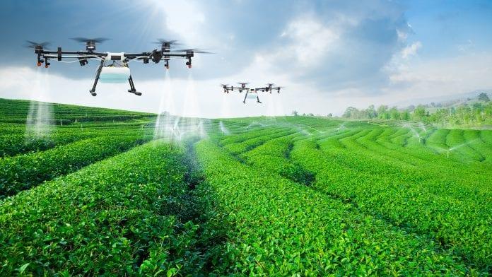 agricultural robots ¿Qué son los robots agrícolas y cómo cambiarán el futuro?