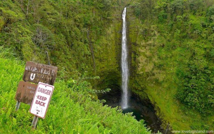 akaka falls picture 800x500 Las cinco mejores cascadas para visitar en Hawái