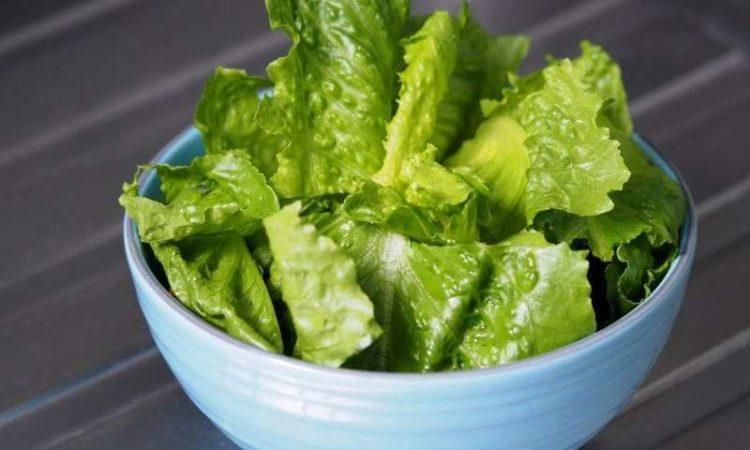 itssafetoeat e1544044070881 Los cinco tipos de lechuga más saludables