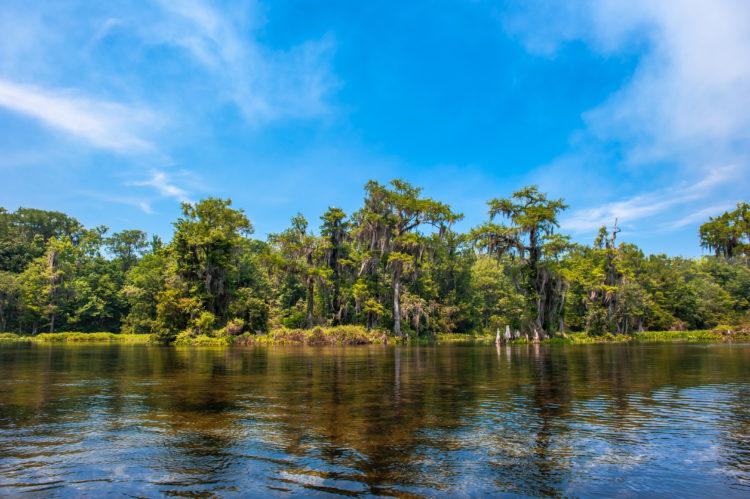 Fregaderos del río Tallahassee