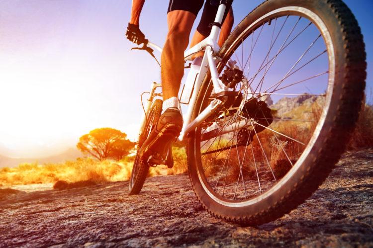 Camine o ande en bicicleta por Benham Trails Head