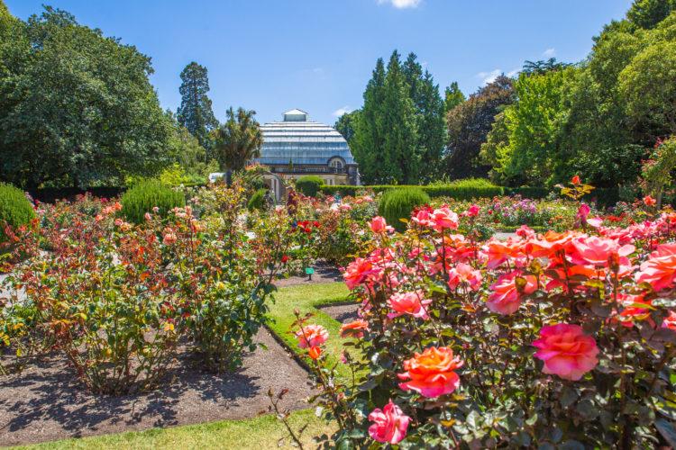 Centro botánico en Nathanael Greene / Close Memorial Park