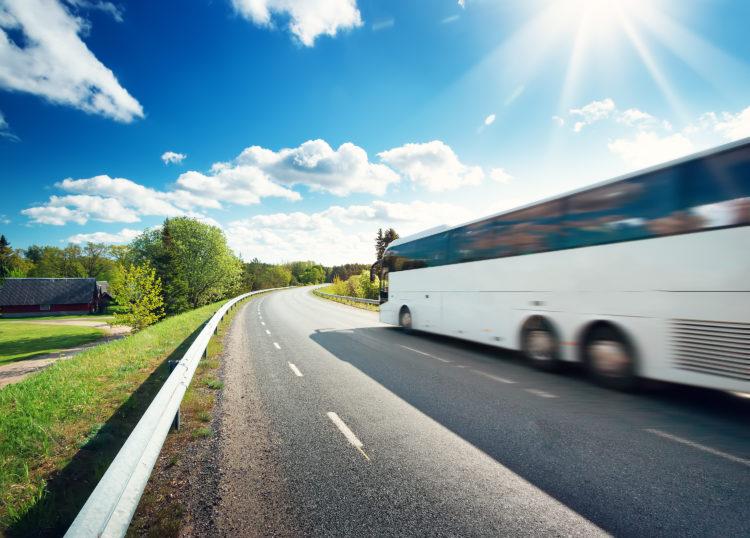 Visitas guiadas en autobús de Red Clay