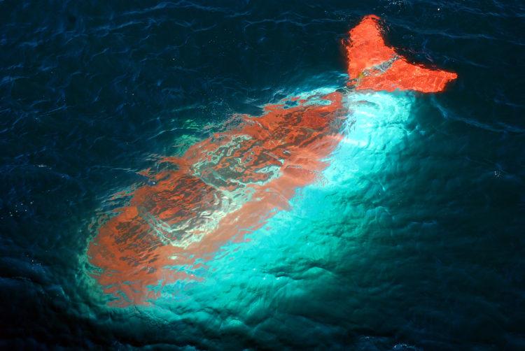 Expedición Submarino Atlantis, Cozumel