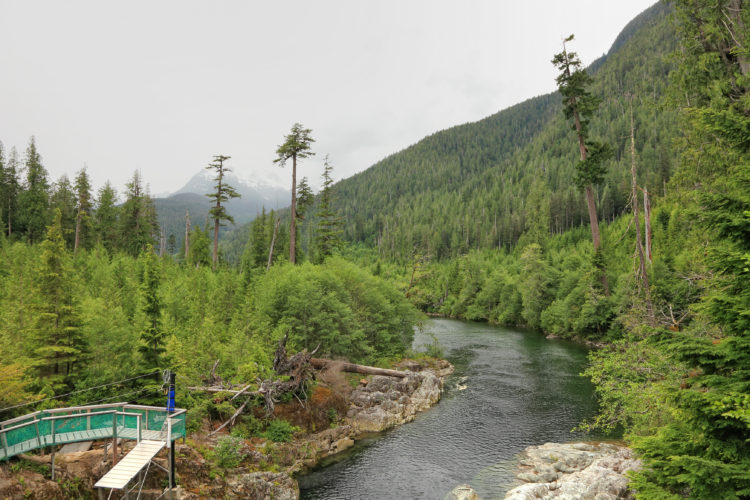 Tours en tirolina en Banff
